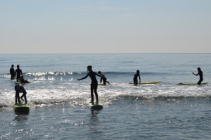 ARS surf